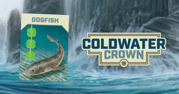 coldwater dogfish